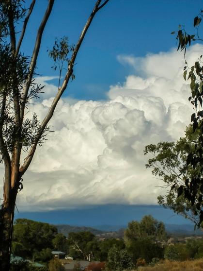 Towering cumulus cloud.