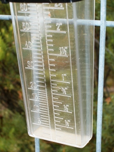 Photo of dry wedge-type rain gauge