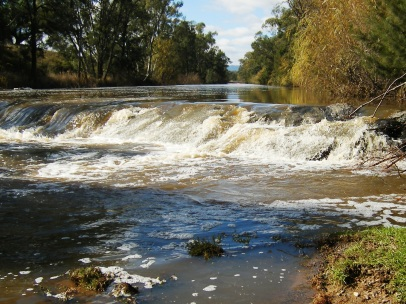 Photo of Namoi River in high flow