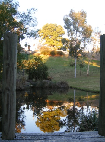 Photo of a pond at sunset
