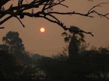 Sun in smoke